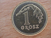 Close up van pools valuta - 1 grosz munt — Stockfoto