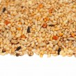 Pile of seed mixture isolated on white background. Pet food for birds — Stock Photo #11525152