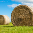 Royalty-Free Stock Photo: Two big hay bale rolls in a green field