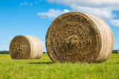 Two big hay bale rolls in a green field — Stock Photo