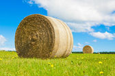 Big hay bale rollin a lush field — Stock Photo
