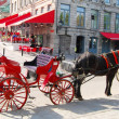 Horse Carriage in Montreal, Canada — Stock Photo