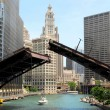 Downtown Chicago Waterfront, Illinois USA — Stock Photo #12070232