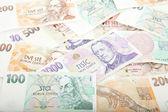 Czech paper money — Stockfoto