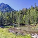 Aiguestortes National Park — Stock Photo #11313970