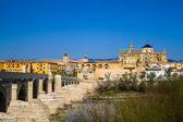 Mezquita and roman bridge — Stock Photo