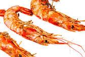 Crevettes grillées — Photo