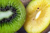 Kiwi vruchten — Stockfoto