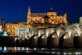 Mezquita und römische Brücke — Stockfoto