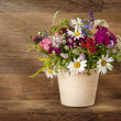 Summer flowers — Stockfoto