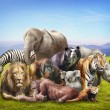 Stock Photo: Group of animals