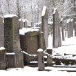 Juwish cemetary — Stock Photo #11553806