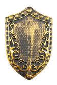 Vintage shield — Stock Photo