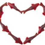coração de tubarão — Foto Stock