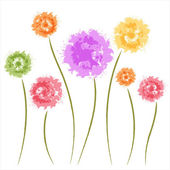 Dandelion flowers. Watercolor — Stock Vector