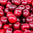 The background of red cherry fruit — ストック写真