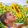 Royalty-Free Stock Photo: Boy smelling a sunflower
