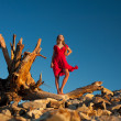 Sexy woman in red dress standing on a dry tree trung against blu — Stock Photo #11695175