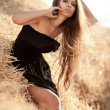 Sexy young woman in black dress stadning in a stack of hay - Foto Stock