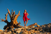 Sexy woman in red dress standing on a dry tree trung against blu — Stockfoto