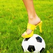 Stock Photo: Soccer ball and high heel