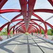 Calgary's Peace Bridge — Stock Photo #11033259