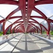 Calgary's Peace Bridge — Stock Photo
