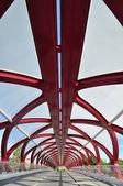 Peace Bridge — Stock Photo
