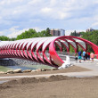 Peace Bridge — Stock Photo #11500810
