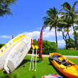 Kaanapali beach — Stock Photo #11750183