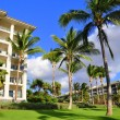 Royalty-Free Stock Photo: Palm trees and condos, Maui