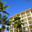Palm trees and condos, Maui - Stock Photo