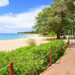 Kaanapali beach boardwalk — 图库照片
