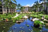 Maui beach resort — Stock Photo