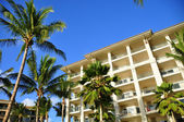 Palm trees and condos, Maui — Stock Photo