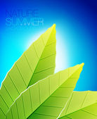 Green nature leaf background — ストックベクタ