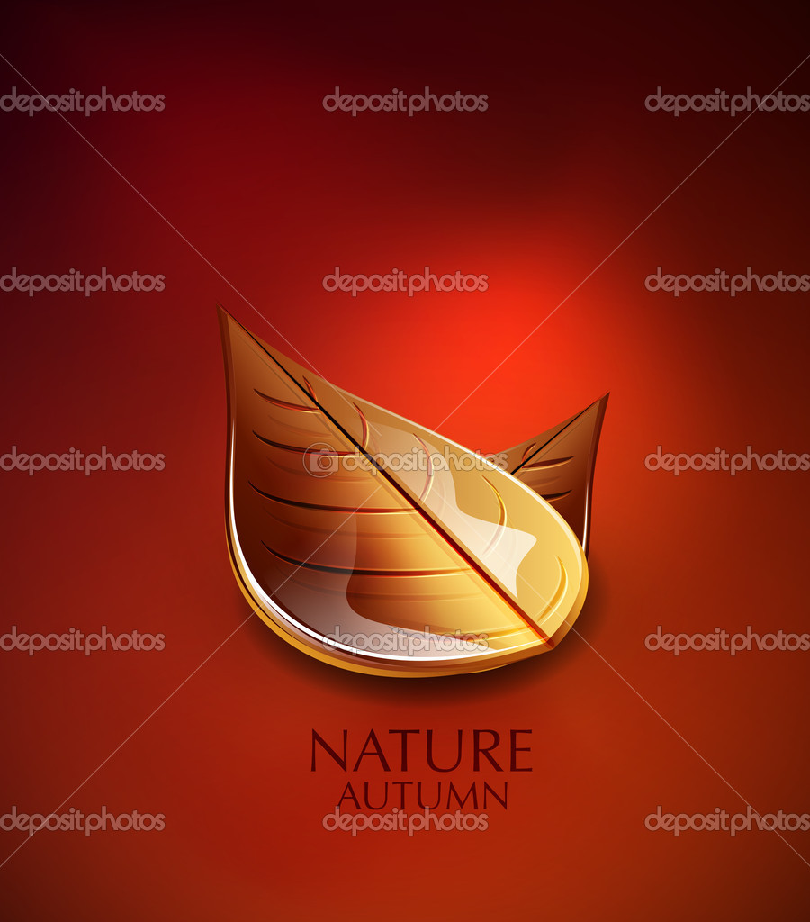 Autumn vector background with orange leaves  Vettoriali Stock  #11540046