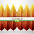 Vector creative autumn background — Stock Vector #11550849