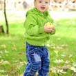 The small beautiful boy walks on a green glade with an apple - Stock Photo