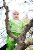秋には木の上の小さな女の子 — ストック写真