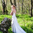 Beautiful girl bride in green wood by summer - Stock Photo