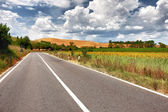 Typical Tuscan landscape with a road — Stock Photo