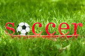 Inscription soccer on the green grass at football field — Stock Photo