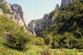 Turda gorge — Stock Photo