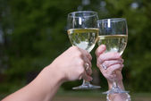 Wine Toast Glasses and Chardonnay Outdoors — Stock Photo