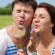 Young happy couple blowing on dandelion — Foto Stock