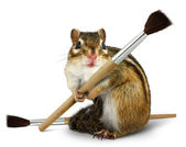 Funny chipmunk hold paint brush — Stock Photo