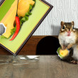 Stock Photo: Prankish chipmunk broke picture