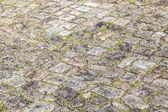 Vieux cailloux rue pierre avec de la mousse — Photo