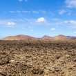 Volcanic area in Lanzarote — Stock Photo